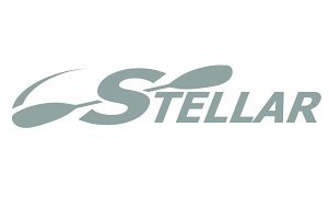 Stellar Decal Silver 38cm